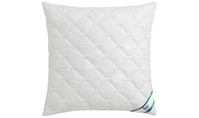 f.a.n. Schlafkomfort Microfaserkissen »Houston«, Bezug: 100% Baumwolle, (1 St.) kaufen