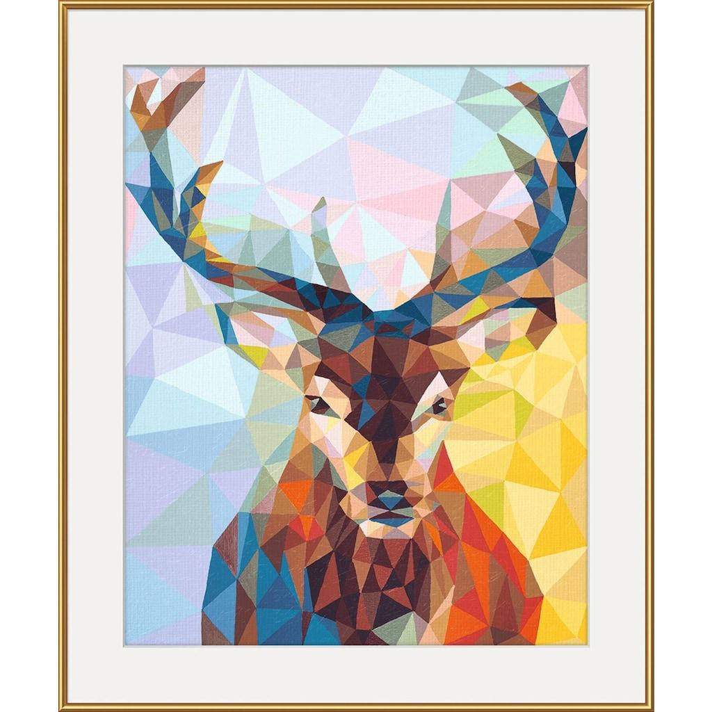 Schipper Malen nach Zahlen »Meisterklasse Premium - Polygon-Art Hirsch«, Made in Germany