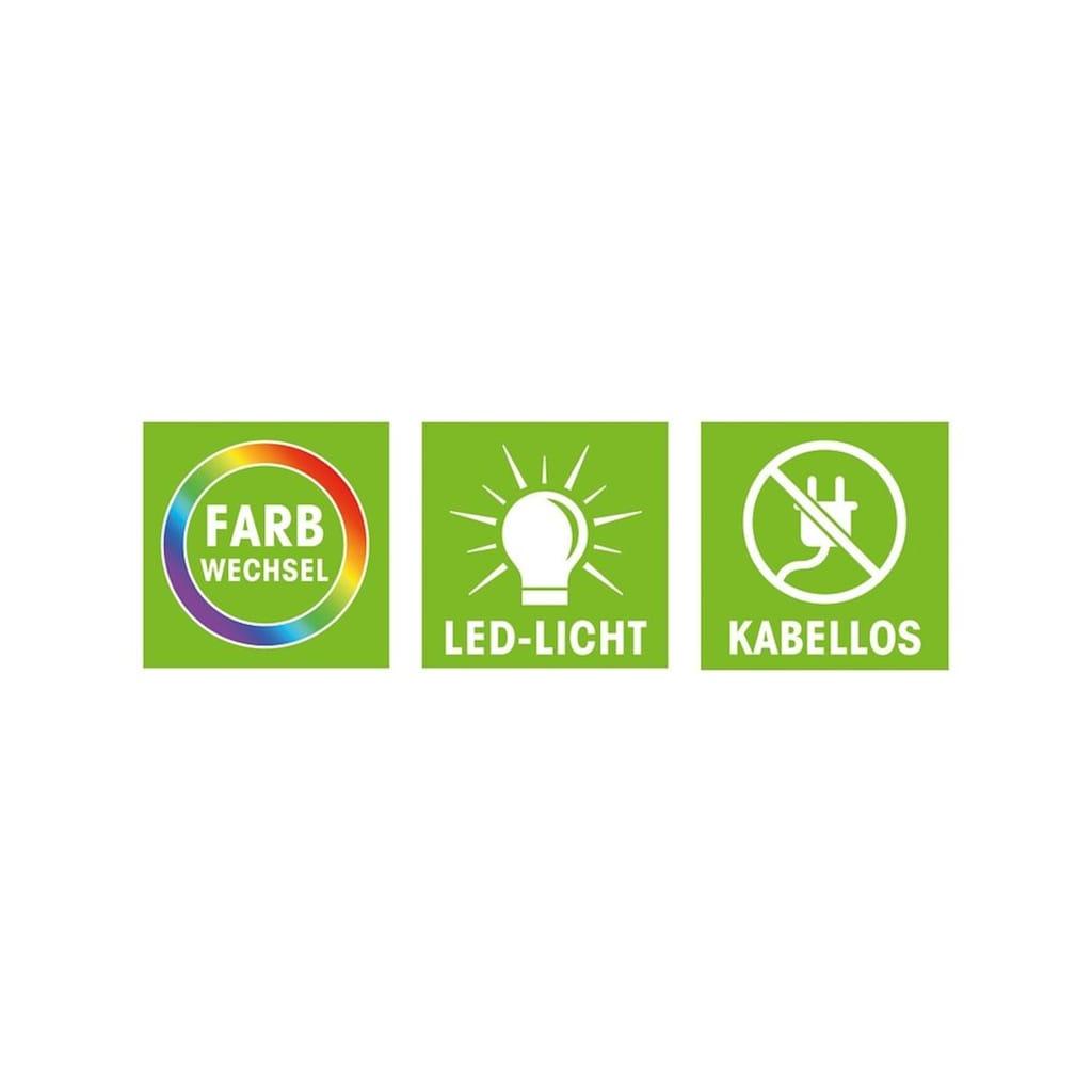 EASYmaxx LED Unterbauleuchte, LED-Board, Kaltweiß-Neutralweiß-Tageslichtweiß-Warmweiß