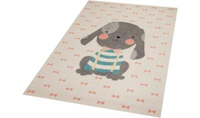 Kinderteppich, »Puppy Berry«, Zala Living, rechteckig, Höhe 9 mm, maschinell gewebt kaufen