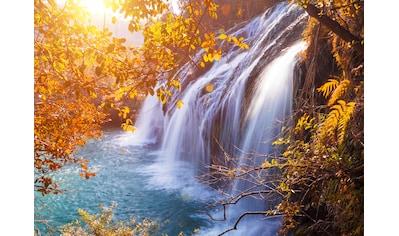 Papermoon Fototapete »Autumn Waterfall« kaufen