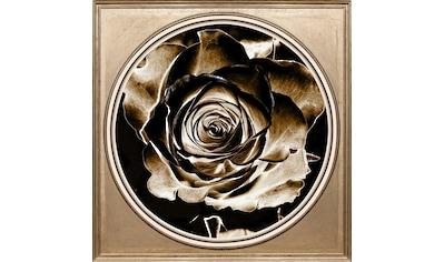 queence Acrylglasbild »Rose Sepia« kaufen