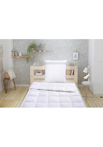 Älgdröm Daunenbettdecke + Kopfkissen »Sorsele«, (Spar-Set), mit skandinavischen Design! kaufen