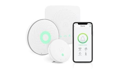 AIRTHINGS Raumluft-Qualitätssensor »House Kit Smart Home« kaufen