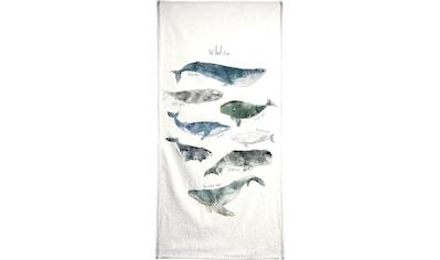 Juniqe Handtuch »Whales«, (1 St.), Weiche Frottee-Veloursqualität kaufen