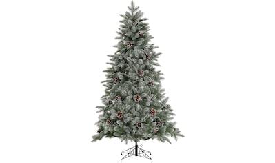 Home affaire Künstlicher Weihnachtsbaum, mit leicht beschneiten Ästen und Tannenzapfen kaufen