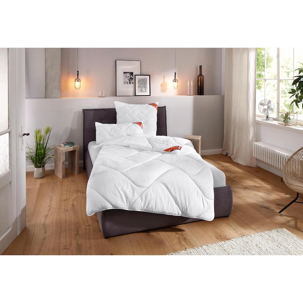 Schlaf-Gut Microfaserkissen »Proneem m. MF-Bezug«, (1 St.), Wirksam gegen Milben (von Hohenstein getestet)