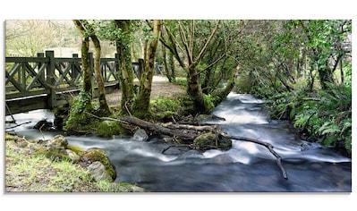 Artland Glasbild »Wilde Wasser«, Gewässer, (1 St.) kaufen