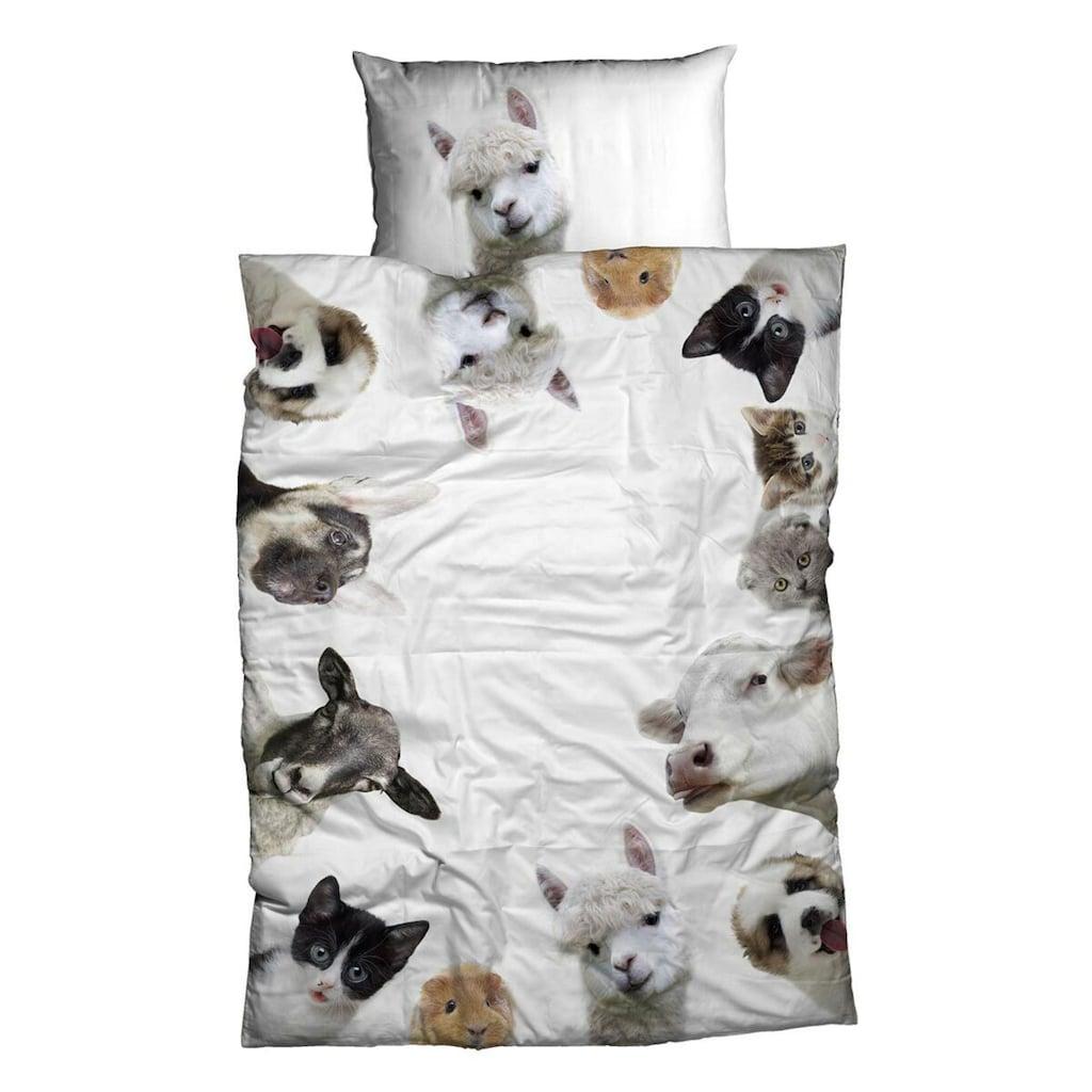 TRAUMSCHLAF Bettwäsche »Alpaka, Hund, Schaf, Katze«, Tierisches Design mit seidigem Glanz