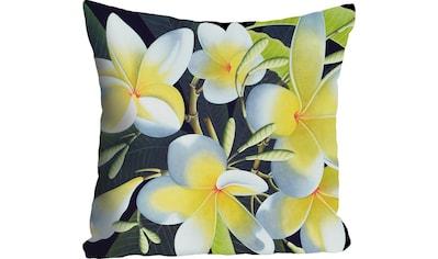 queence Kissenhülle »»Blüten««, (1 St.) kaufen