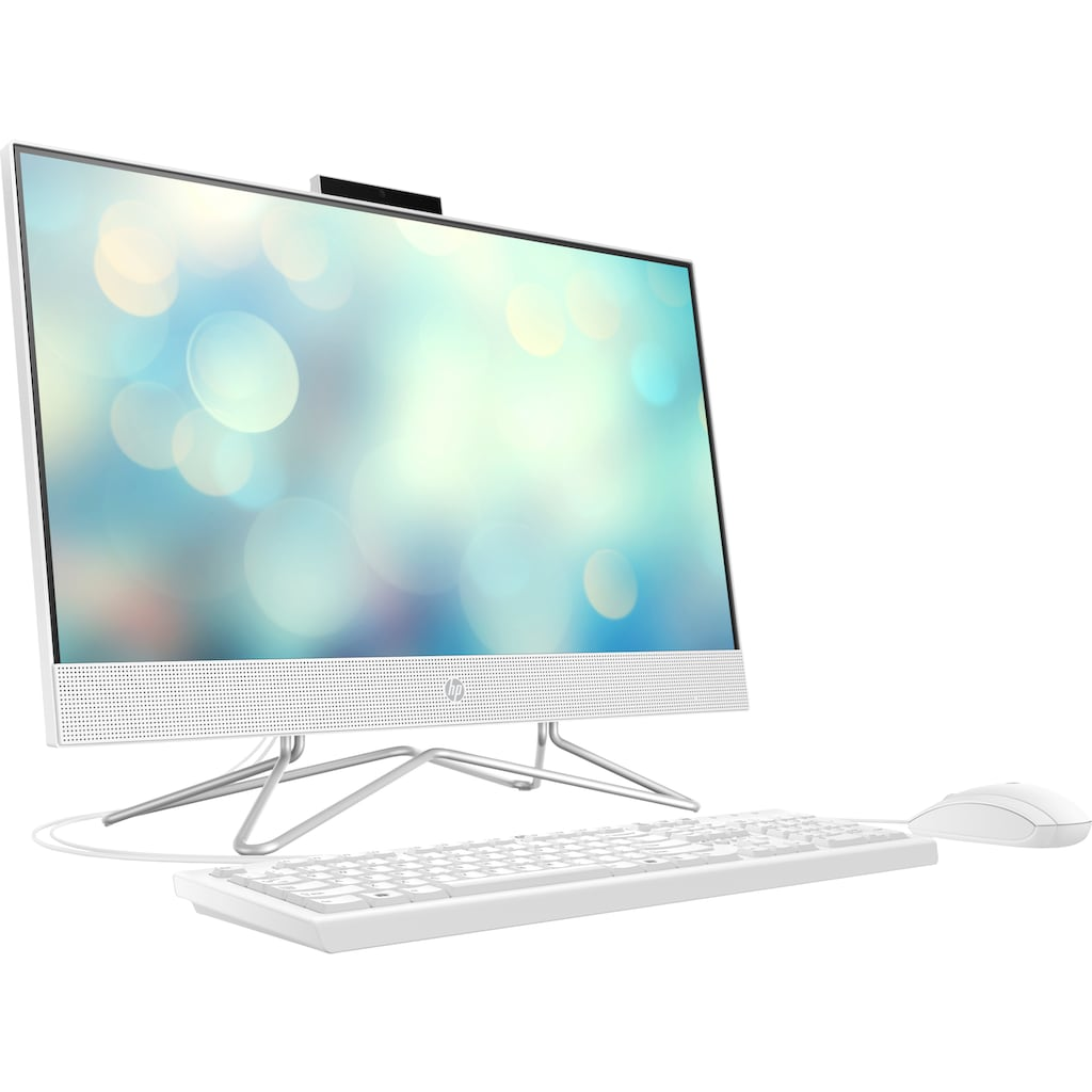 HP All-in-One PC »Pavilion 24-df0022ng«