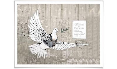 Wall-Art Poster »Banksy Die Friedenstaube Graffiti«, Graffiti, (1 St.), Poster, Wandbild, Bild, Wandposter kaufen