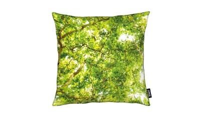 Dekokissen, »Hazel Tree«, Juniqe kaufen