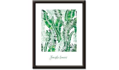 Artland Wandbild »Dschungelblätter« kaufen