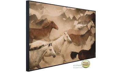 Papermoon Infrarotheizung »Pferde Herde«, sehr angenehme Strahlungswärme kaufen