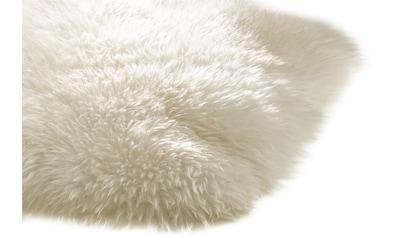 Lammfell echtes aus Australien kaufen