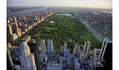 Papermoon Fototapete »Central Park View« kaufen