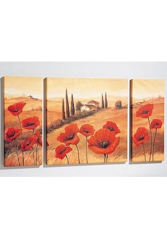 Home affaire Wandbild »Toskana«, 3tlg., 1x 70/70 cm, 2x 30/70 cm kaufen