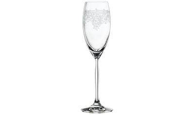 SPIEGELAU Champagnerglas »Renaissance«, (Set, 12 tlg.), 230 ml kaufen