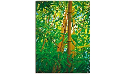 Artland Wandbild »Bambus IV«, Gräser, (1 St.), in vielen Größen & Produktarten... kaufen