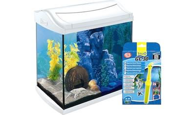 Tetra Aquarien-Set »AquaArt LED«, 30 Liter, BxTxH: 38,5x28x43 cm, inkl. GC 30... kaufen