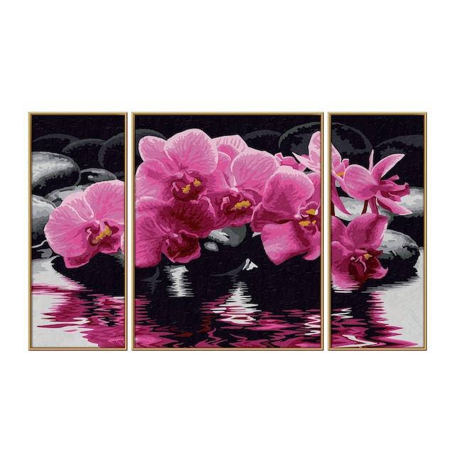 "Schipper Malen nach Zahlen ""Triptychon - Orchideen"""