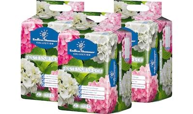 ENDLESS SUMMER Hortensienerde , rosa/weiß, 3x20 Liter kaufen