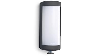 steinel,Außen - Wandleuchte»L 626 LED«, kaufen