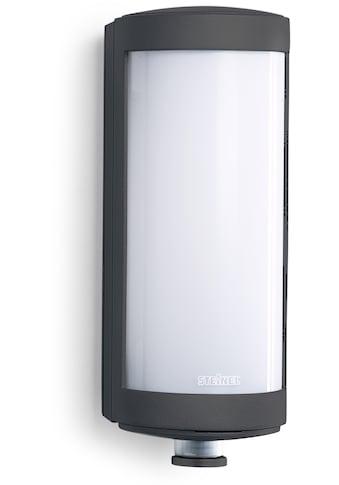 steinel Außen-Wandleuchte »L 626 LED«, LED-Board, 1 St., Warmweiß, 360°... kaufen