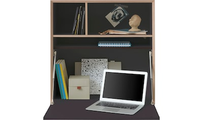 "Müller SMALL LIVING Regalelement ""VERTIKO PLY FIVE HOME OFFICE"" kaufen"