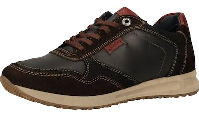 Josef Seibel Sneaker »Leder« kaufen