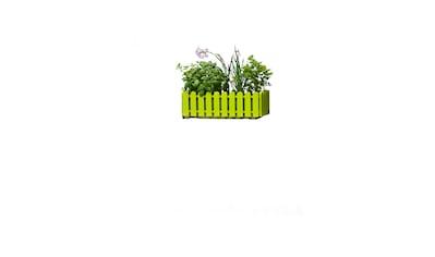 Emsa Blumenkasten »LANDHAUS«, grün (BxT: 50x20 cm) kaufen