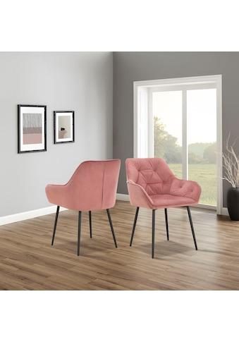 INOSIGN Armlehnstuhl »Betty«, im 1er und 2er Set erhältlich, mit weichem Samtvelours Bezug, mit zwei unterschiedlichen Beinfarben schwarz und eichefarben auswählbar, Sitzhöhe 49 cm kaufen