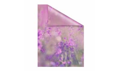 LICHTBLICK Fensterfolie »Blumenwiese« kaufen