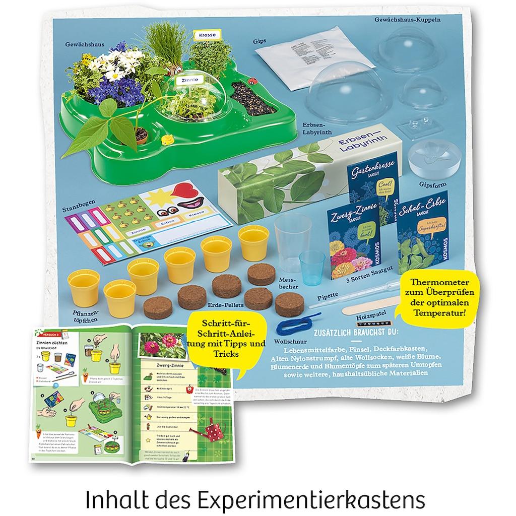 Kosmos Experimentierkasten »Meine erstes Gewächshaus«, Made in Germany
