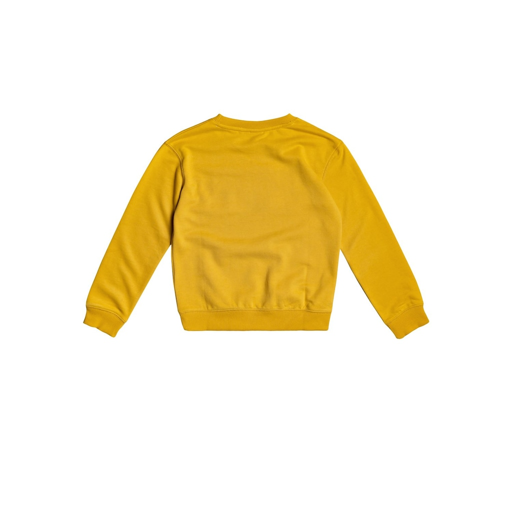 Roxy Sweatshirt »Spring Day«
