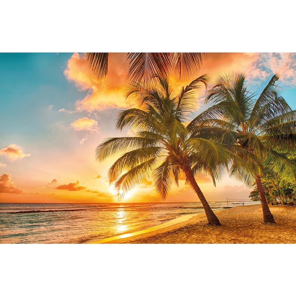Papermoon Fototapete »Barbados Palm Beach«