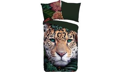 PURE luxury collection Wendebettwäsche »Wildlife flowers«, mit Leopard kaufen