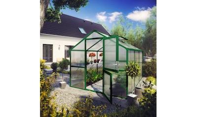KGT Gewächshaus »Tulpe III«, BxTxH: 233x323x215 cm kaufen