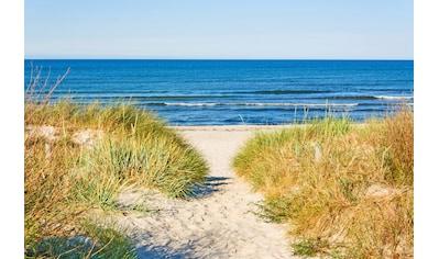 Papermoon Fototapete »Beach Access« kaufen