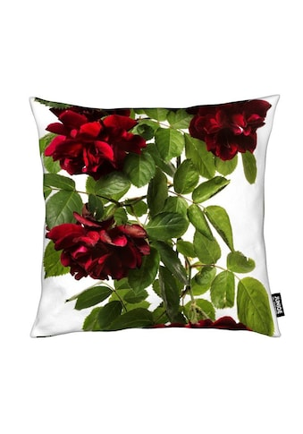 Dekokissen, »Flora  -  Rose«, Juniqe kaufen