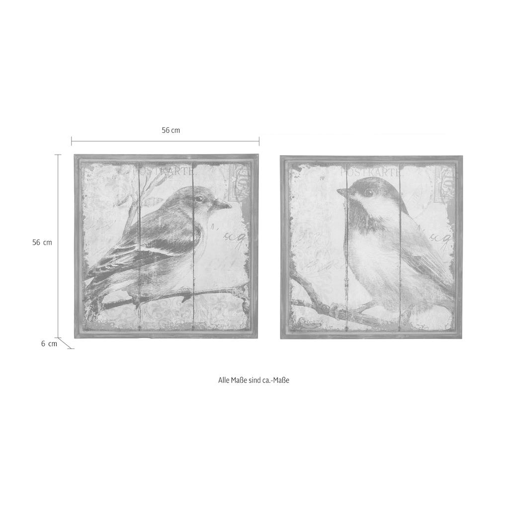 HOFMANN LIVING AND MORE Bild »Vogel«, (Set), Tiermotiv (Set, 2 St.)