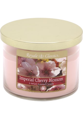 """Candle - lite™ Duftkerze """"Royale Classic  -  Imperial Cherry Blossom"""", (1 - tlg.) kaufen"""