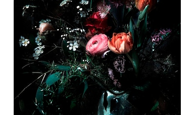 KOMAR Fototapete »Still Life« kaufen