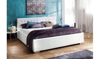 meise.möbel Polsterbett, wahlweise in Komfortliegehöhe kaufen