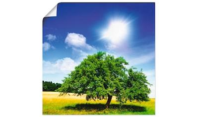 Artland Wandbild »Baum des Lebens«, Bäume, (1 St.), in vielen Größen & Produktarten -... kaufen